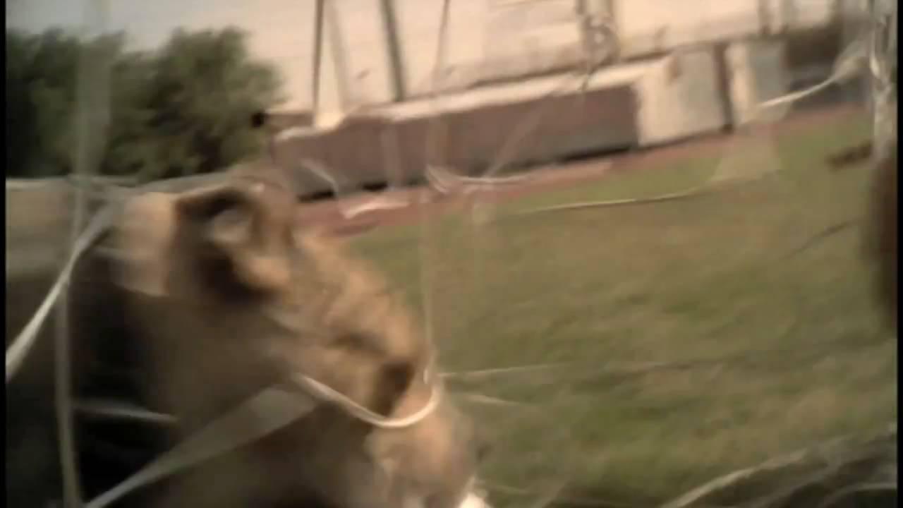 7f72a8662549 Samuel Eto o Puma V1.08 Commercial - YouTube