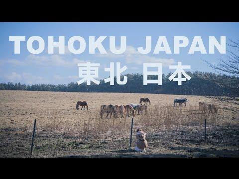 東北日本旅游 Tohoku Japan Travel Vlog in March
