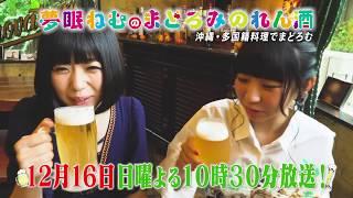 BS日テレ「夢眠ねむのまどろみのれん酒」 第11回 予告映像(12月16日...