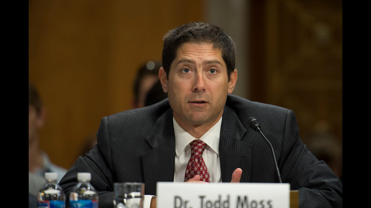 Todd Moss Congressional Testimony on Energy Access - YouTube