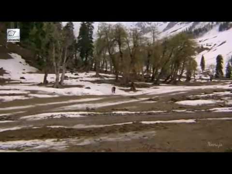 In Haseen Wadiyon Se - Pyaasa Sawan(1981) HD