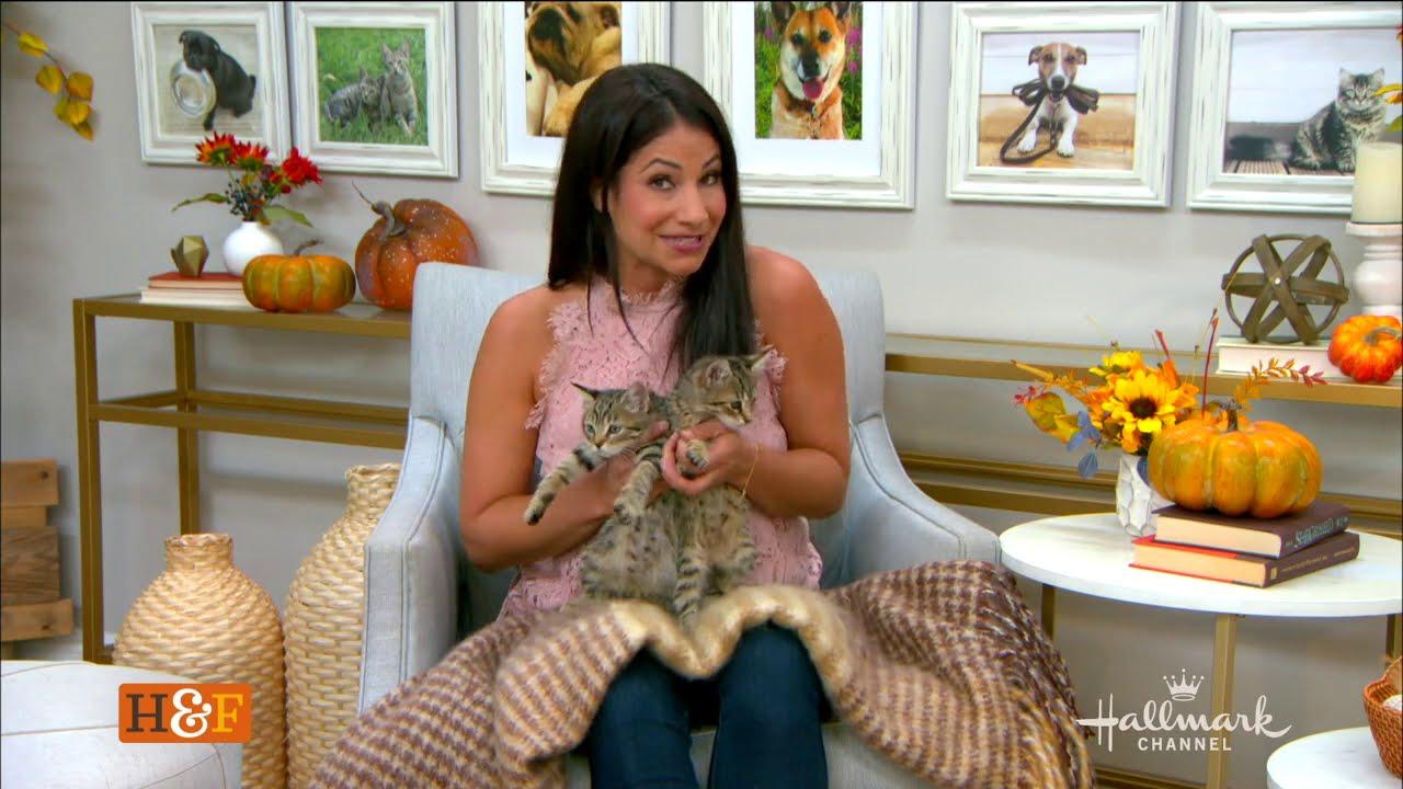 Jesse & Jemma the Kittens in CA
