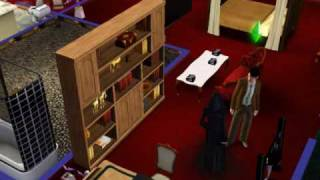What the heck Grim Reaper do in my house (Sims 3)