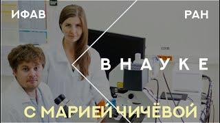 Внауке: Мария Чичёва