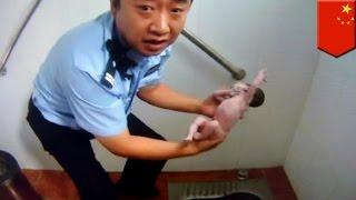 Новорожденнную девочку спасли из унитаза