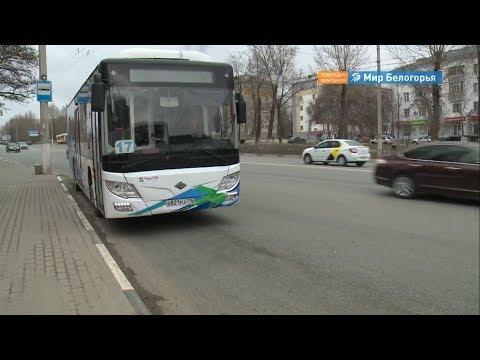 Ночные маршруты появятся в Белгороде