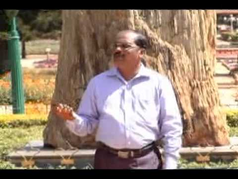 Tamil Christian Songs - Nan nadanthalum.... (All to Jesus Ministries - Karaikal)