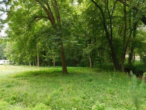 5977 Forrest Hills Drive - Chandler, Indiana