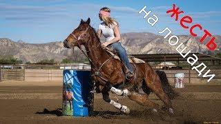 70 километровый поход на лошадях