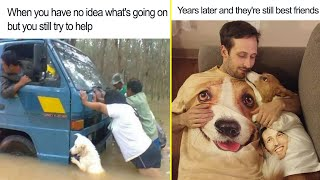 The Happiest Dog Memes Ever That Will Make You Smile From Ear To Ear - part 3