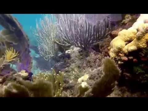 2015-07-16 Sombrero Reef