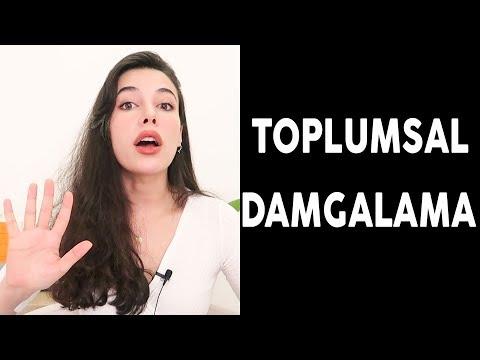 TOPLUMSAL DAMGALAMA