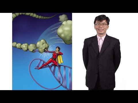 Taekjip Ha (Johns Hopkins / HHMI) 1: Developing Single Molecule Technologies To Study Nanomachines