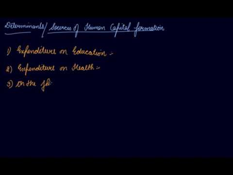 Sources of Human Capital Formation | Class 11 Economics Human Capital Formation In India