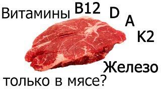Железо, витамины B12, D, A, K2 - нужно ли есть мясо, чтобы их получить? (Vegan Gains)