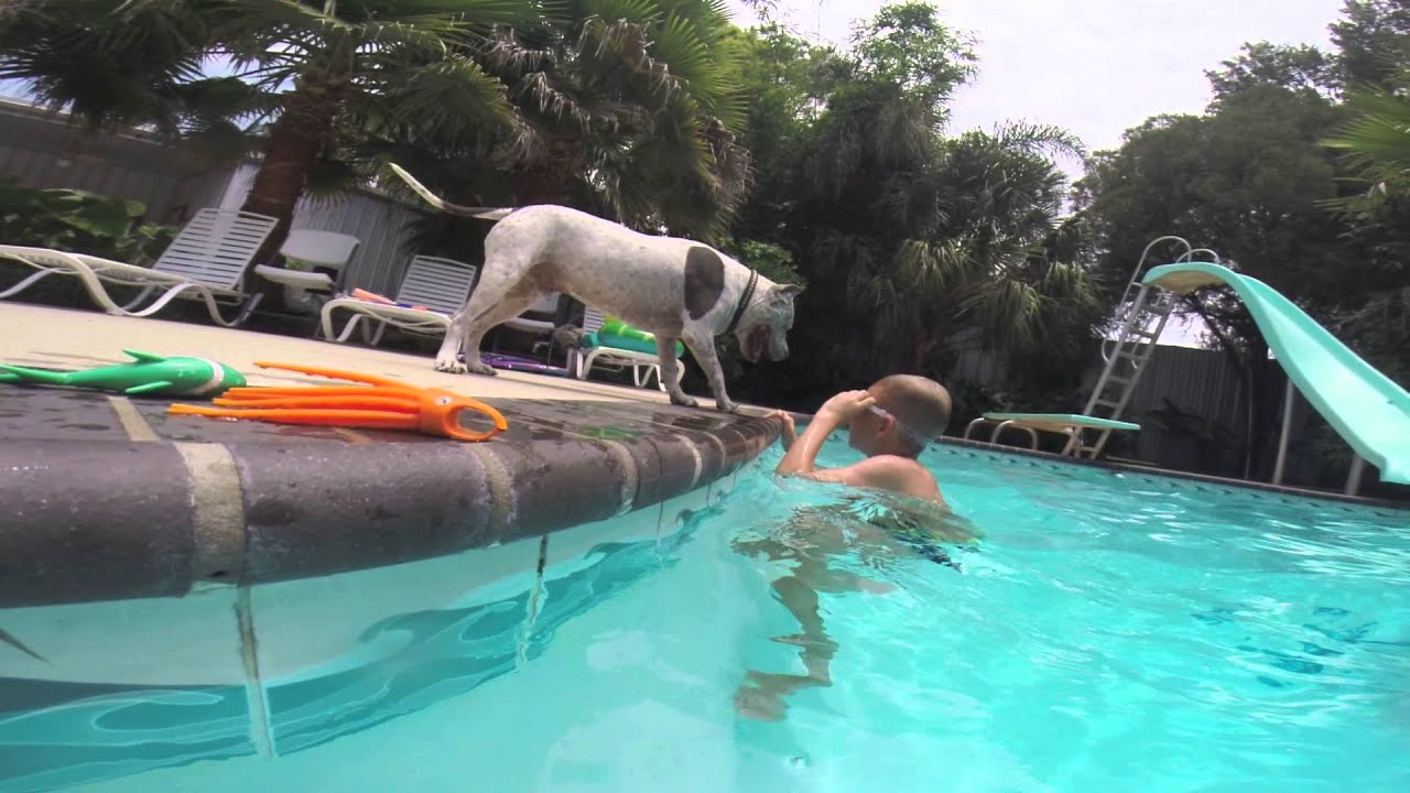 Swimming pool fun 8 year old diving boy youtube for What to do with old swimming pool