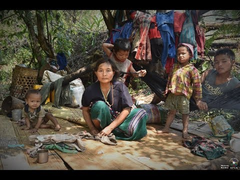 The Nightmare Return - Karen hopes for peace and stability dashed by Burma Army's actions