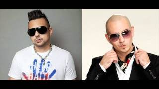 "Sean Paul feat Pitbull  ""She Doesn"