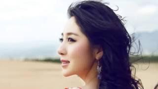 Gambar cover 蝶舞流殇