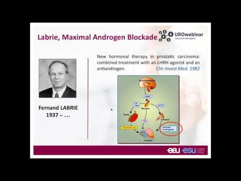 Urowebinar: Hormone therapy in prostate cancer  who, how and when