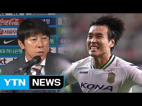 이동국 전격 발탁...벼랑 끝 한국축구 위기 탈출 '선봉' / YTN