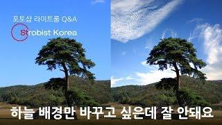 [포토샵 라이트룸 Q&A] 배경 바꾸기를 하고 싶은데 복잡한 소나무 때문에 잘 안돼요