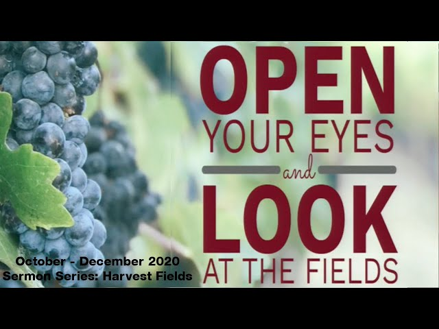 October 4, 2020 - Open Your Eyes and Look at the Fields