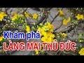 Làng Mai Thủ Đức | Viet Nam Life and Travel | BKB CHANNEL