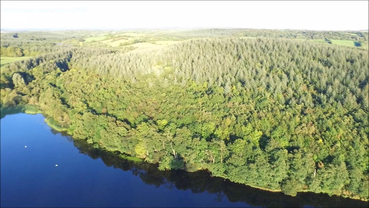 Download Dartry Forest Cootehill Co, Cavan