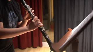 Spohr: Clarinet Concerto No. 1 in C Minor, Op. 26 2nd mov