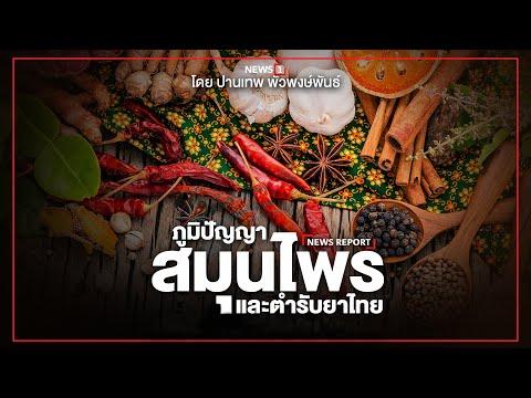 """"""" ภูมิปัญญาสมุนไพรและตำรับยาไทย """" โดย ปานเทพ พัวพงษ์พันธ์ : [NEWS REPORT]"""