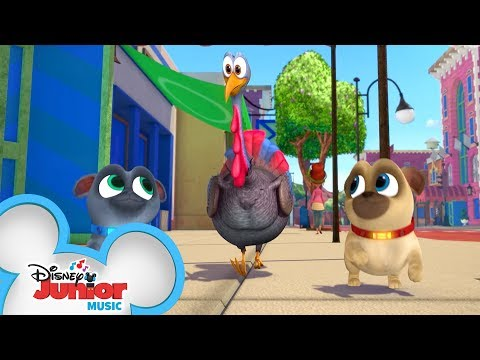 The Turkey Trot �� | Music Video | Puppy Dog Pals | Disney Junior