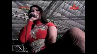 Download lagu New Tarantula Trend Music Dangdut Jamaika Duo Tarantula MP3