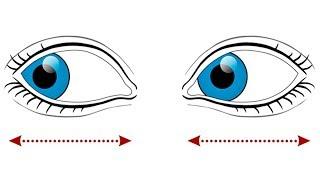Гимнастика для глаз по Жданову при близорукости, видео урок