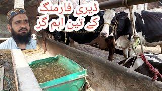 Best of the best cow farming|| How to earn money from cow farm||Dairy farming in Pakistan