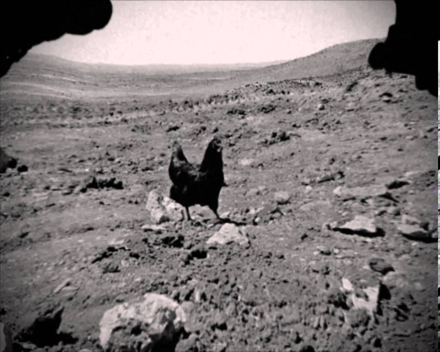 LEAKED 2013 NASA footage by Curiosity rover displaying life form ...