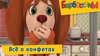 Всё о конфетах 🍭 Барбоскины 🍭 Сборник мультфильмов 2018