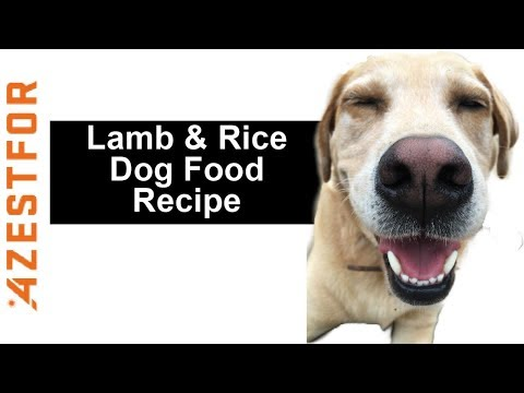 Complete And Balanced Homemade Dog Food For Common Protein Allergies - Lamb & Rice