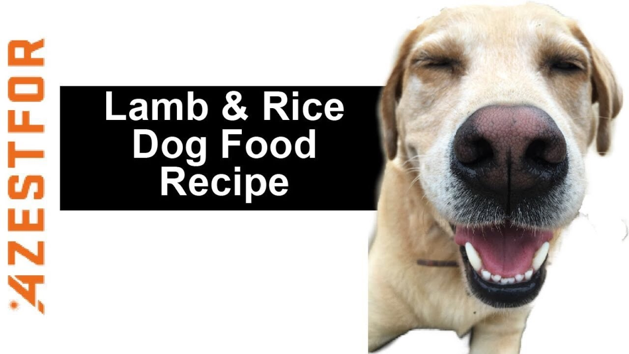Complete and balanced homemade dog food for common protein complete and balanced homemade dog food for common protein allergies lamb rice forumfinder Image collections