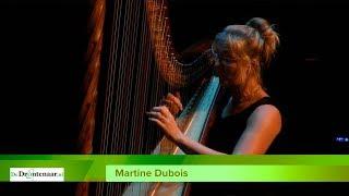 Harpiste Martine Dubois uit Biddinghuizen in De Meerpaal in Dronten
