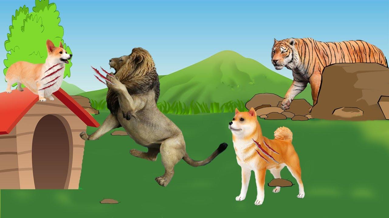 حواديت أطفال | حدوتة الكلب بوبا والنمر المفترس