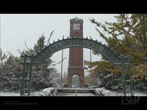 10/31/2019 - Suburbs Of Chicago, IL - Halloween Snowstorm
