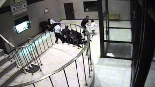 Police Brutality/Abuse at the Springfield, MA Police Department