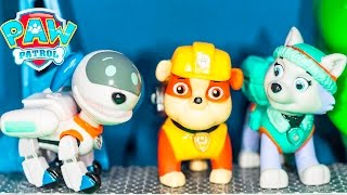 PAW PATROL Nickelodeon Paw Patrol RoboDog 3 Pack Robo Dog  + Everest + Rubble Paw Patrol Video