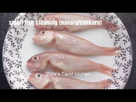 How to clean a Small fish/sankara fish cleaning/navara fish cleaning