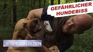 Hundebiss: Überträgt das Tier Tollwut? | Auf Streife - Die Spezialisten | SAT1. TV