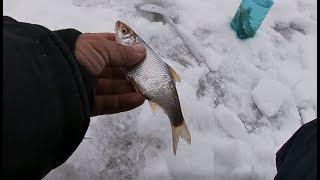 Рыбалка на жерлицы С ЧЕГО НАЧАТЬ Ловля плотвы Живец лютует Ловля щуки на жерлицы