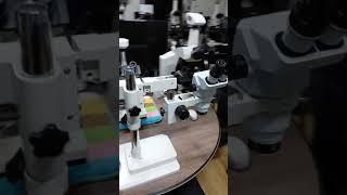 현미경 촬영대행 대여렌탈 (2)