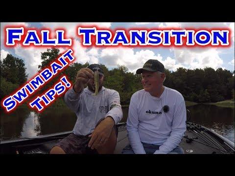 Lake Fork Bass Fishing: Fall Transition Swimbait Tips!