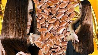Маска для волос из семени льна и льняного масла Блестящие волосы гарантированы POLI NA PALME